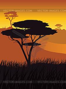 African Sunset Landscape.