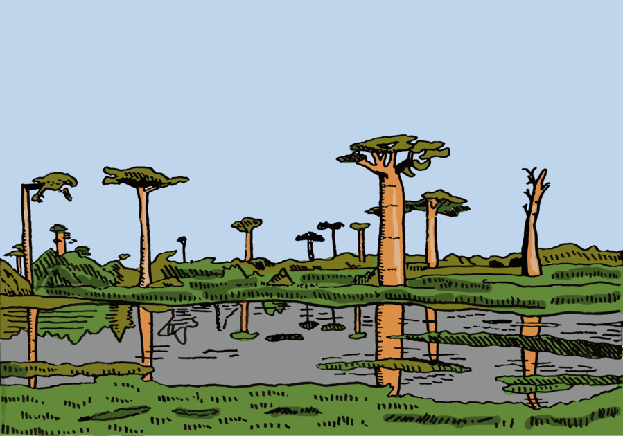 Landscape, Tree, Plant, transparent png image & clipart free download.