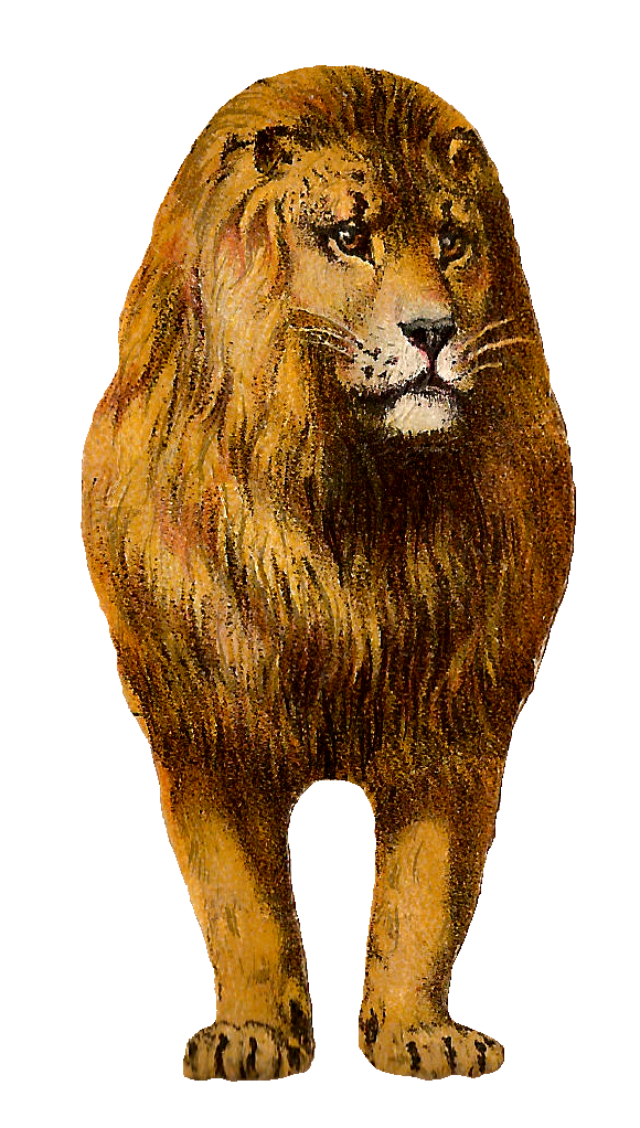 Antique Images: Free Digital Lion Clip Art Animal Graphic Front.