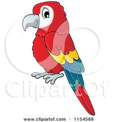 african grey parrot cartoon.