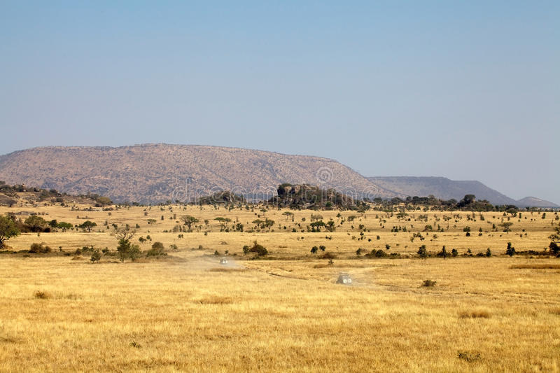 African Plains Clipart.