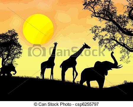 African safari theme.