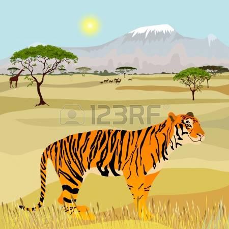 9,191 Savanna Animal Stock Vector Illustration And Royalty Free.