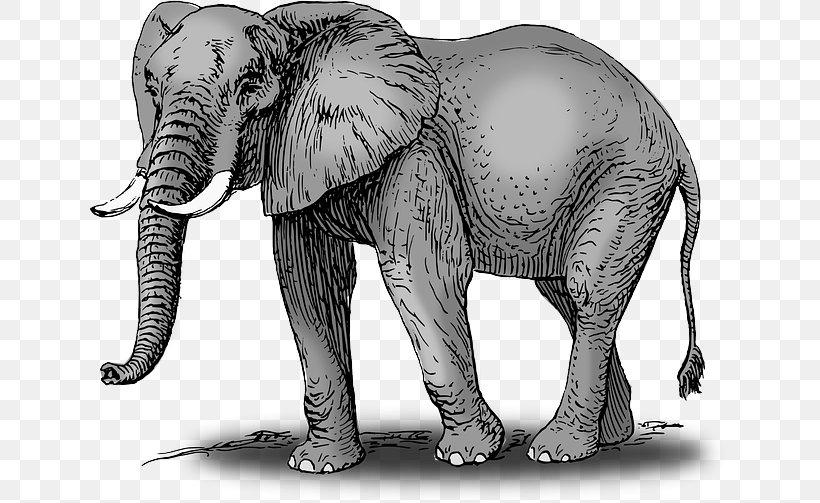 African Bush Elephant Drawing Elephantidae Clip Art, PNG.