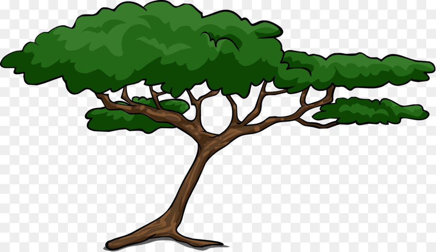 African Tree png download.