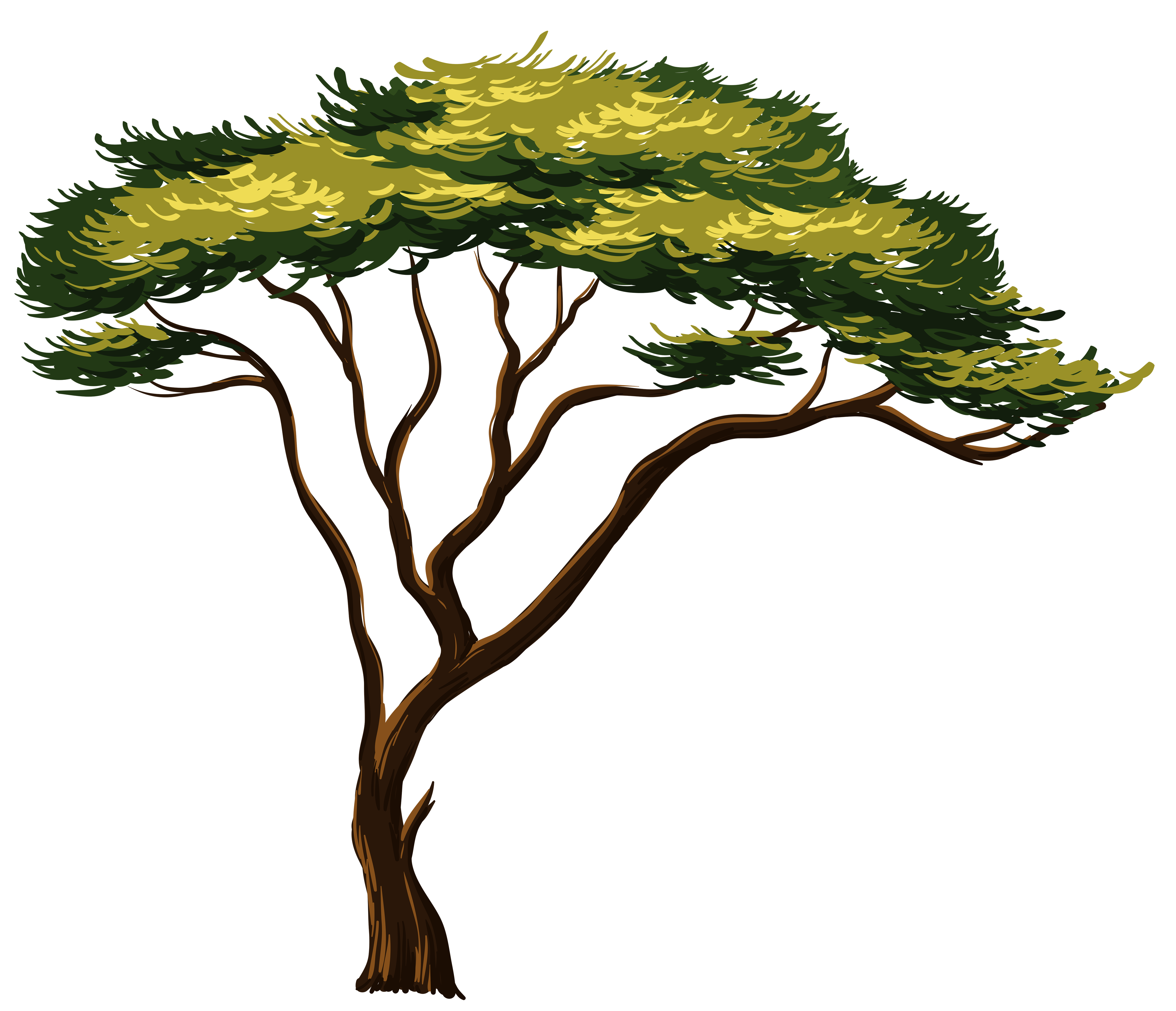 Painted African Tree PNG Clipart Picture.