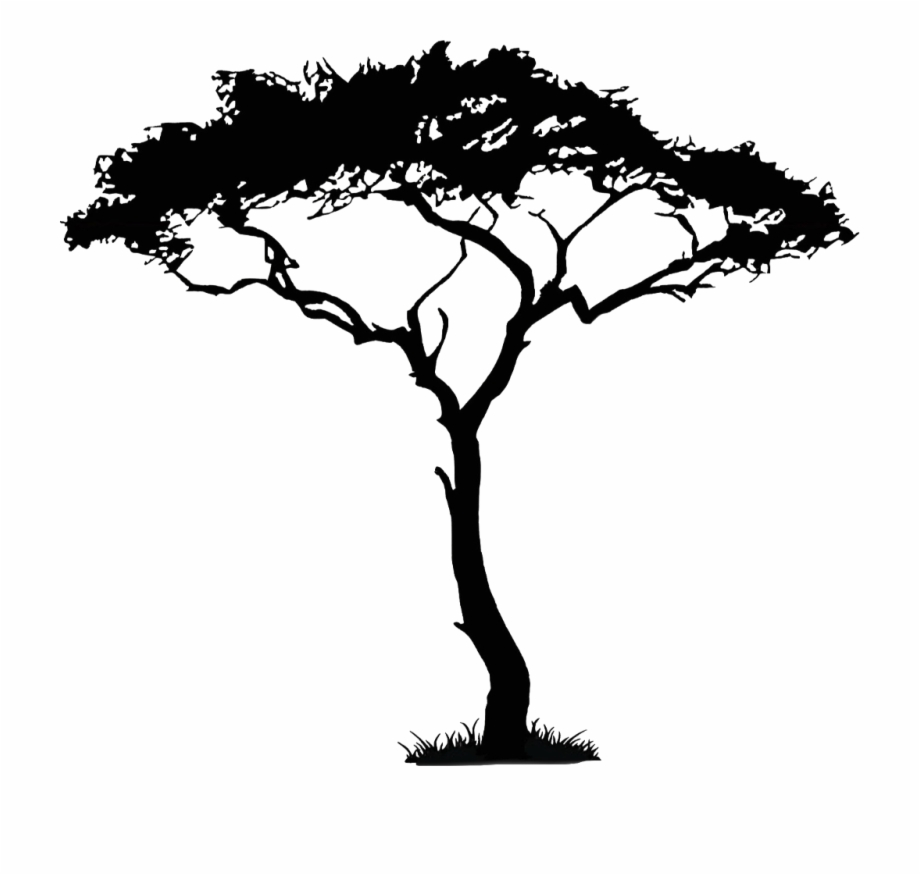Africa Tree Png.