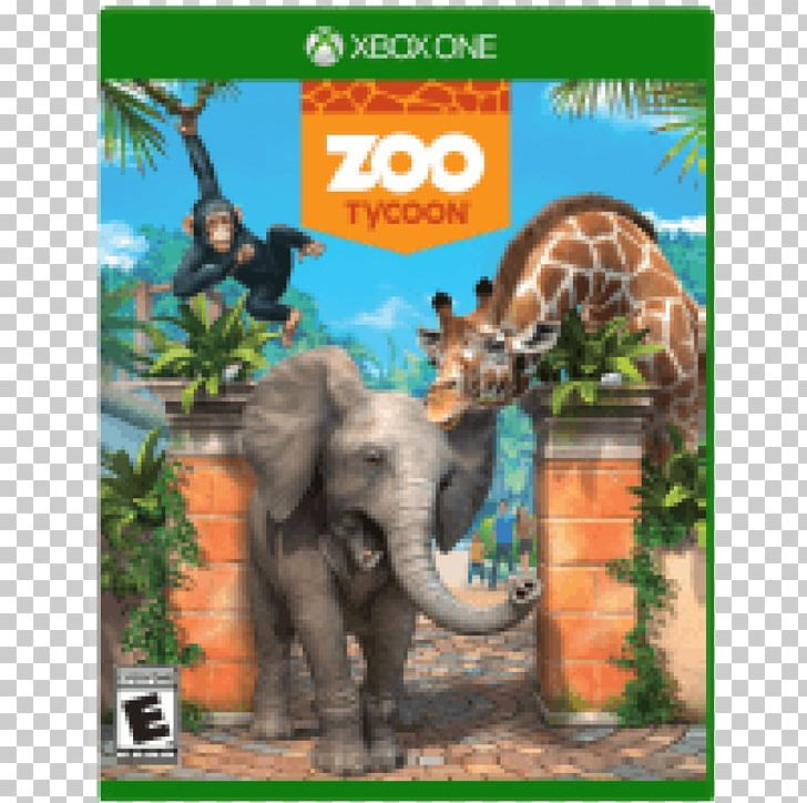 Zoo Tycoon Xbox 360 Minecraft Xbox One Video Game PNG.