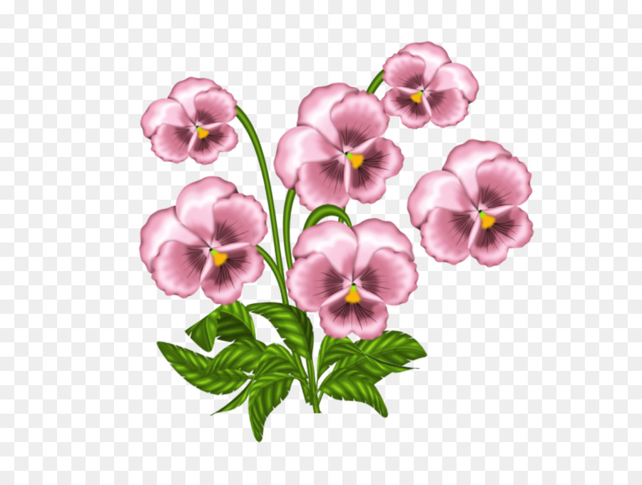 Clip art African violets Pansy Portable Network Graphics Openclipart.