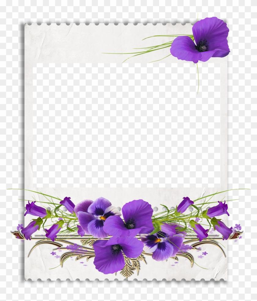 African Violets Clip Art.