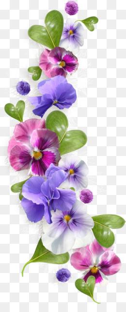 African Violets PNG.