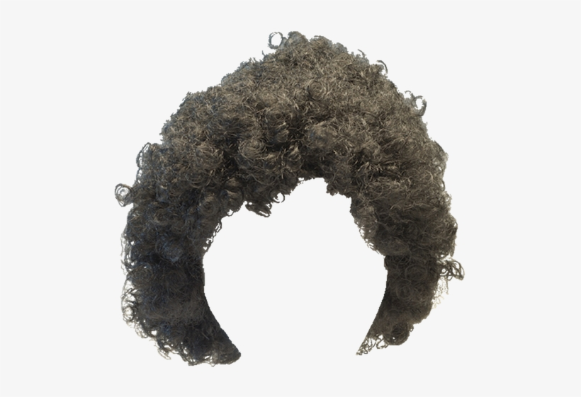 Afro Wig Png.