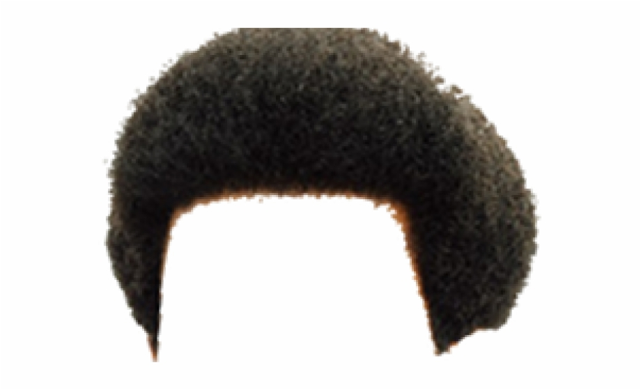 Afro Hair Png Transparent Images.