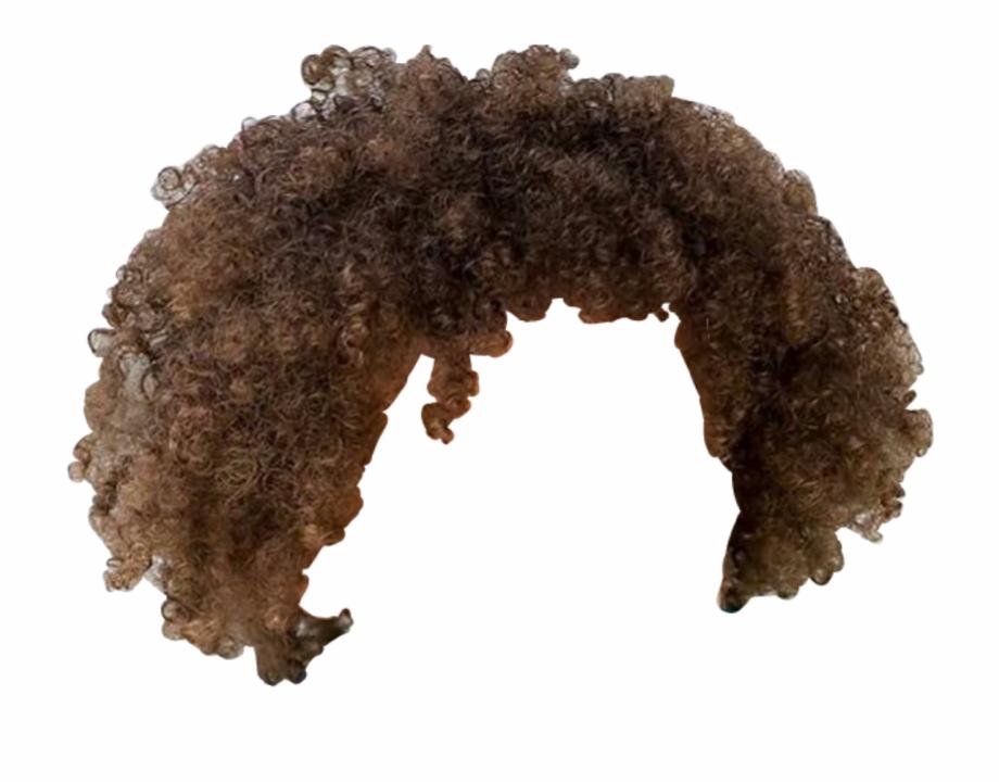 Png Brown Curls.