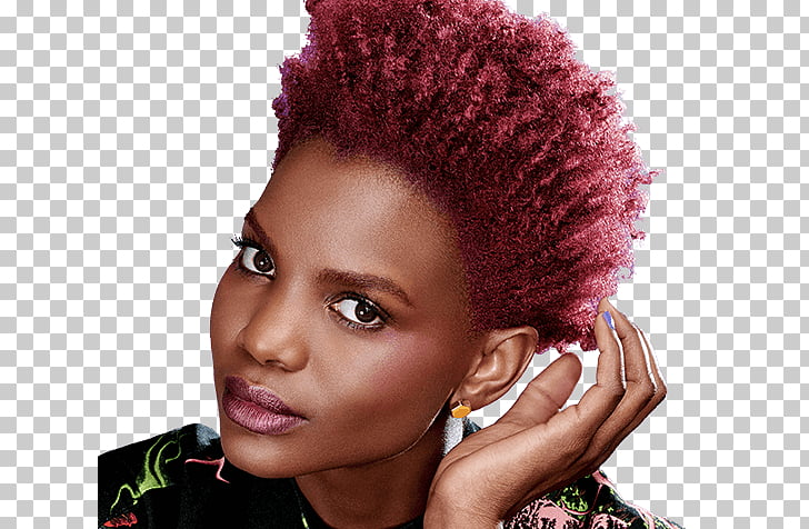 Human hair color Black hair Hair coloring, hair afro PNG.