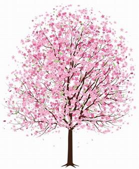 Apple blossom tree clipart.