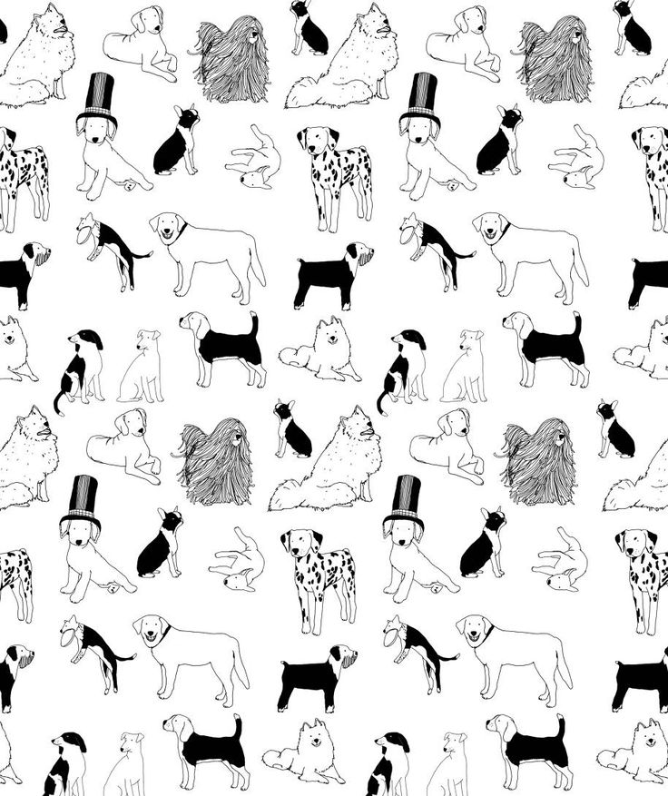 1000+ images about Dog shapes on Pinterest.