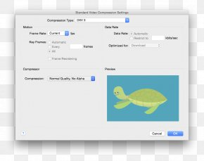 Adobe After Effects QuickTime Codec Computer Software, PNG.