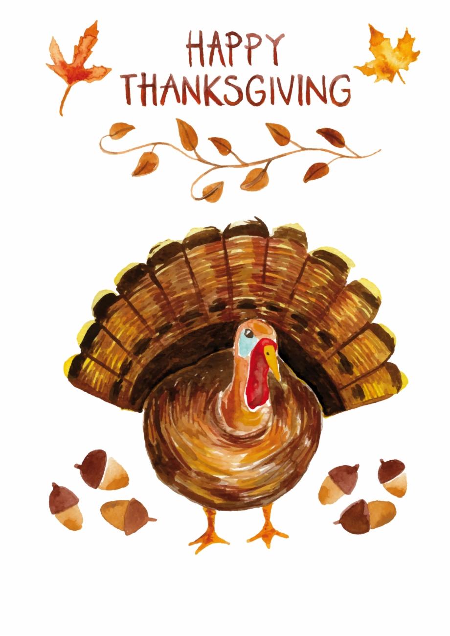 Thanksgiving Turkey Png Transparent Background.
