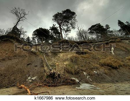 Stock Images of Baltic coast after storm k1667986.