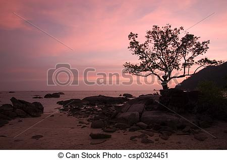 Stock Photography of Romantic Sunset.