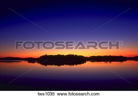 Stock Image of Sun creates an orange glow over mangrove trees.