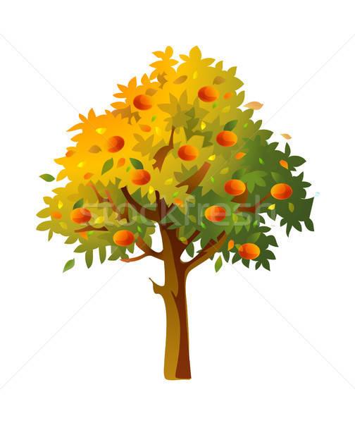 Ağaç · meyve · düşmek · vektör · örnek · clipart.