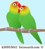 Agapornis Clip Art and Illustration. 21 agapornis clipart vector.