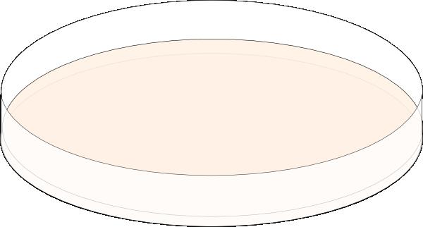 Agar Plate Clip Art at Clker.com.