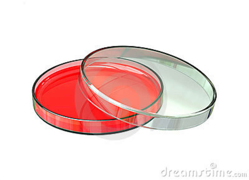 Agar Stock Illustrations.