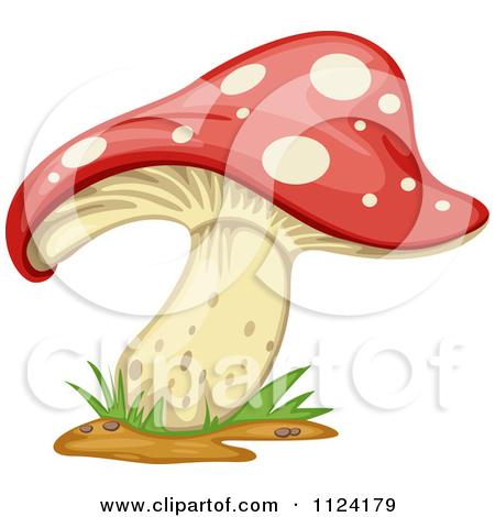Clipart Of A Fly Agaric Mushroom 1.