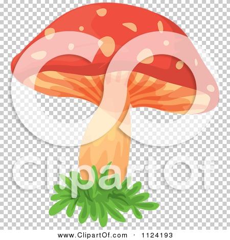 Clipart Of A Fly Agaric Mushroom 2.