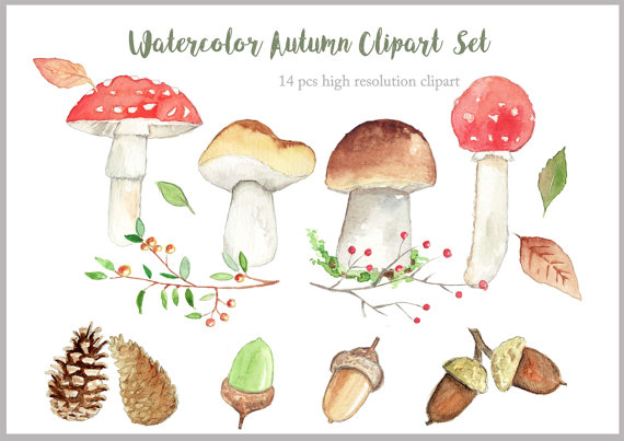 Watercolor Autumn Mushroom Forest Clipart high by TanyaKooijDesign.
