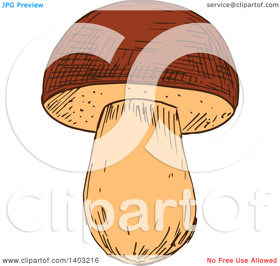 Clipart of a Sketched Mushroom.