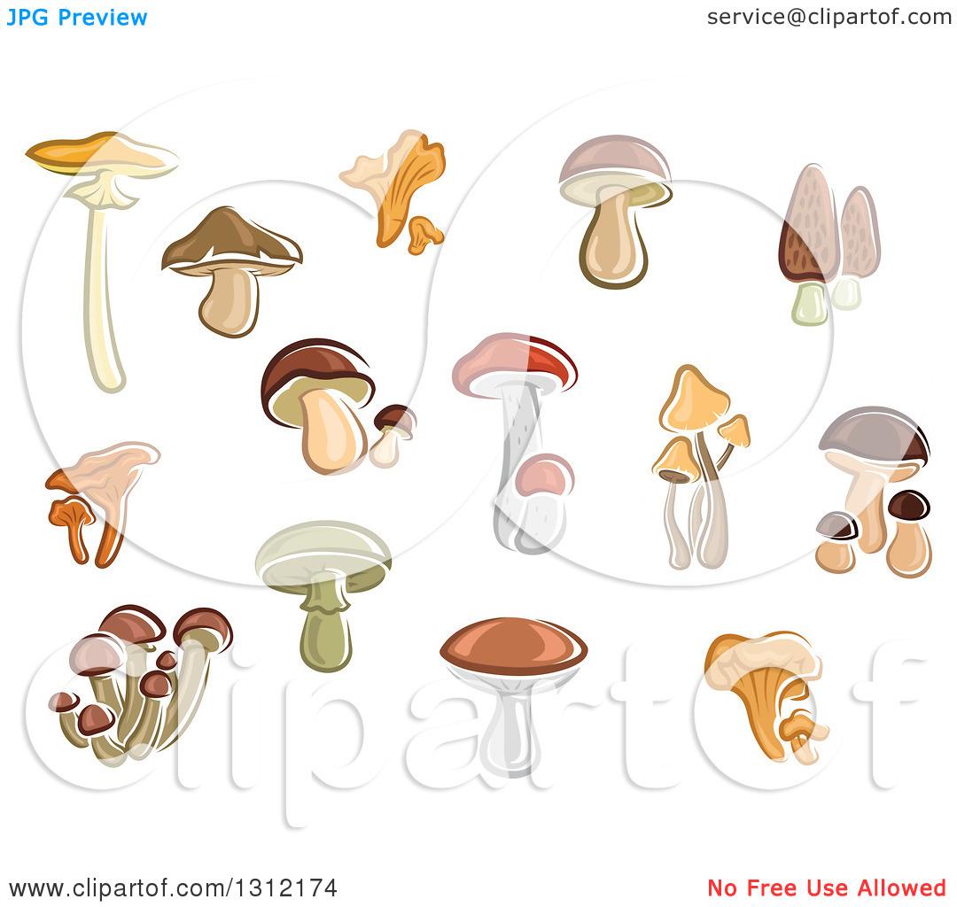 Clipart of Cartoon Mushrooms.