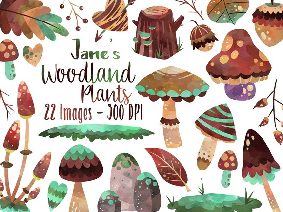 Watercolor Woodland Plants Clipart ~ Illustrations on Creative Market.