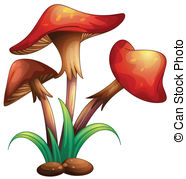 Agaricus bisporus Clipart Vector and Illustration. 27 Agaricus.