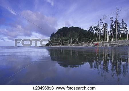 Stock Photo of Queen Charlotte Islands.