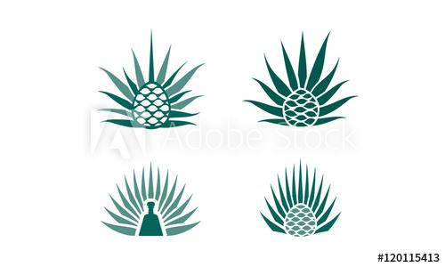 agave plant logo.