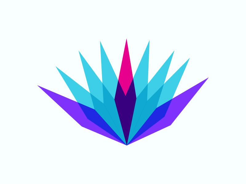 Agave logo by Lital karni on Dribbble.
