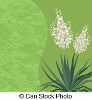Agavoideae Clipart Vector and Illustration. 15 Agavoideae clip art.