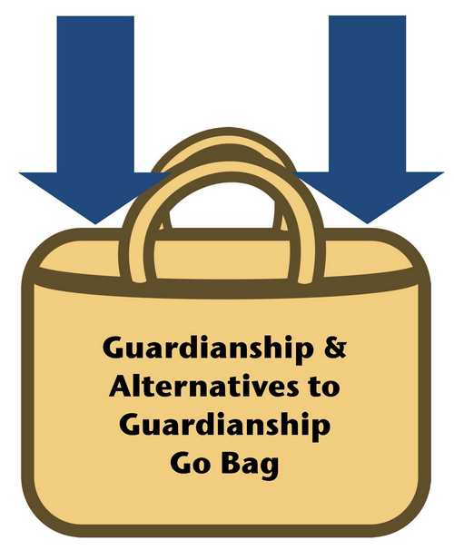 The Arc of New Jersey Family Institute : Resources : Guardianship.