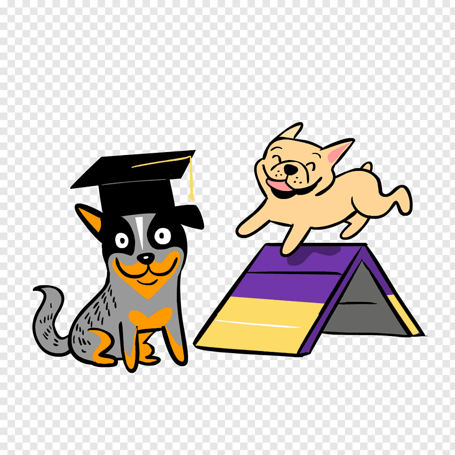 Graduation, Dog, Christian Clip Art, Dog Agility, Dog.