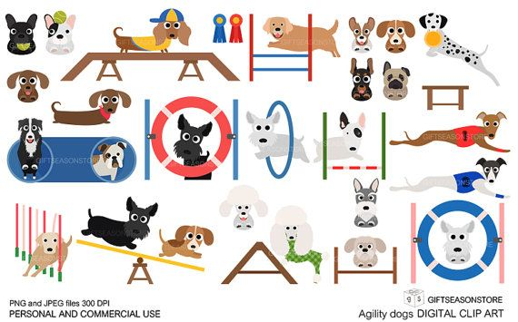 Agility dogs Digital clip art for Personal and Commercial use.