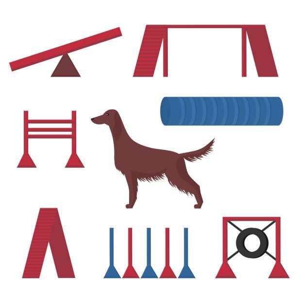 Best Dog Agility Illustrations, Royalty.