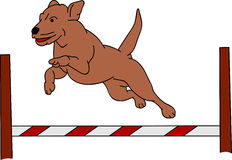 Dog Agility Stock Illustrations.