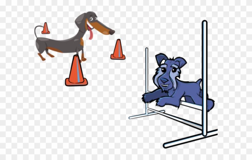 Beagle Clipart Agility Dog.