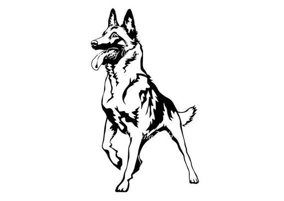 malinois art dog svg png clipart Belgian shepherd vector.