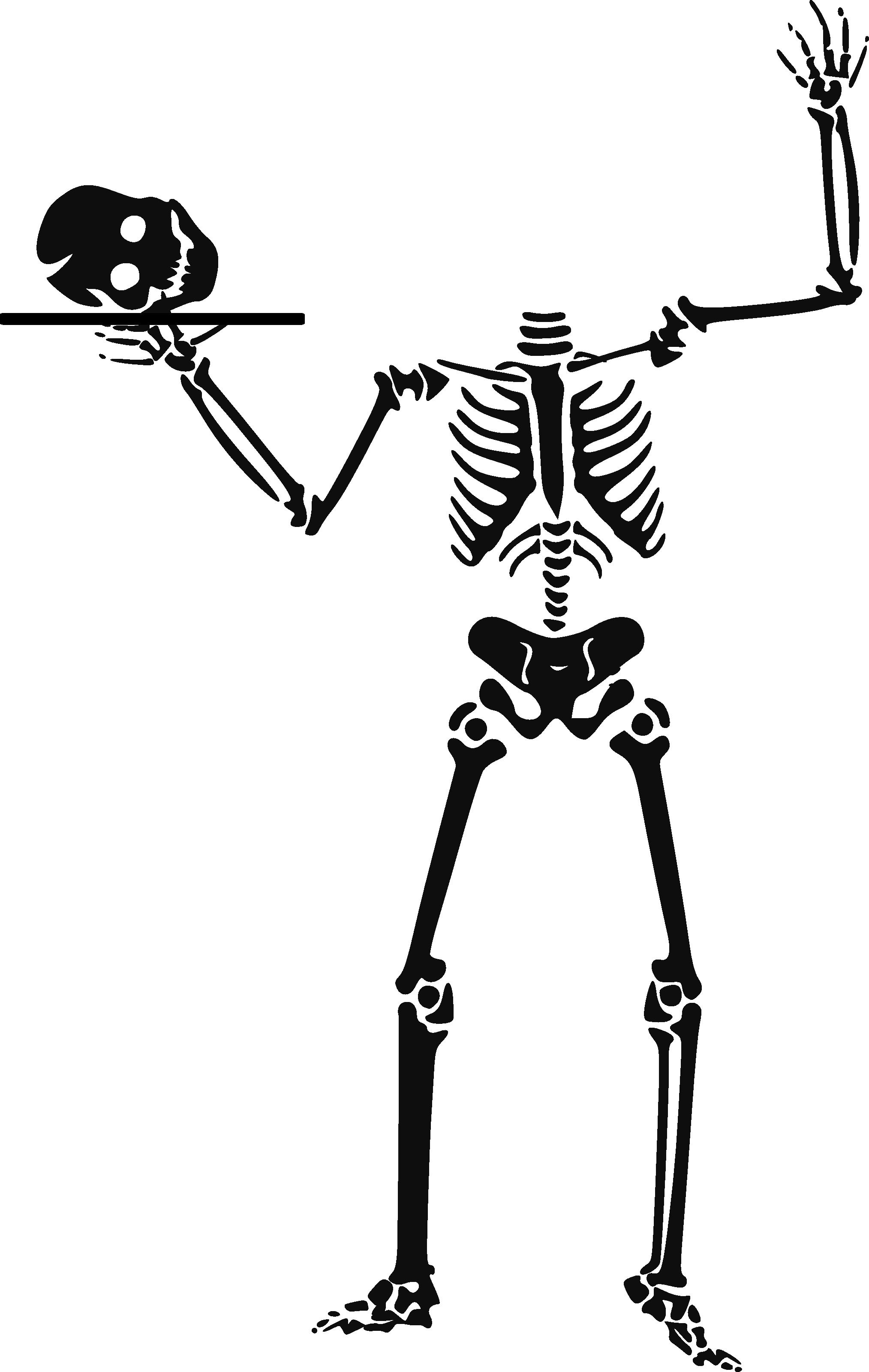 Free Human Skeleton Clipart, Download Free Clip Art, Free.