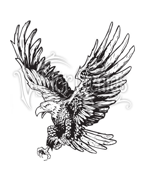 Flying Hand Drawn Eagle ClipArt.